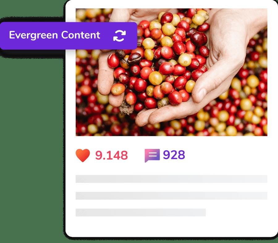 Evergreen Content illustration